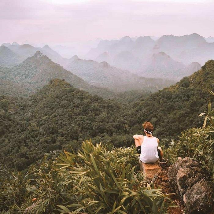 Vẻ đẹp hùng vĩ của Vườn Quốc gia Cúc Phương. Ảnh: gody.vn