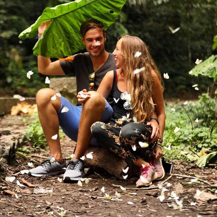 Mùa bướm ở rừng Cúc Phương. Ảnh: 500px.com