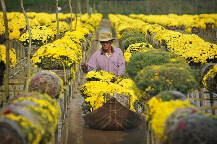 Làng hoa Tân Quy Đông rộn ràng ngày Tết. Ảnh: vnecdn