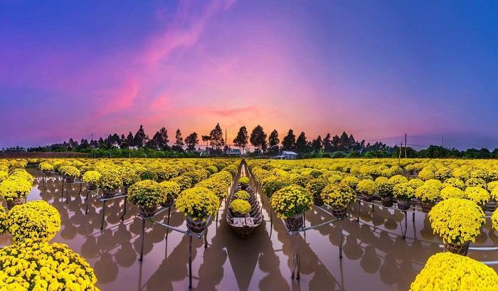 Đây được xem là làng hoa lớn nhất khu vực đồng bằng Sông Cửu Long. Ảnh: focusasiatravel